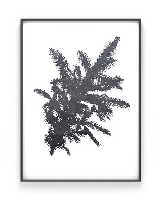 Botanische Kerst Poster in zwart wit óf met kleur