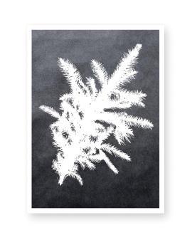 Botanische Kerst Poster met Dennetak in zwart wit